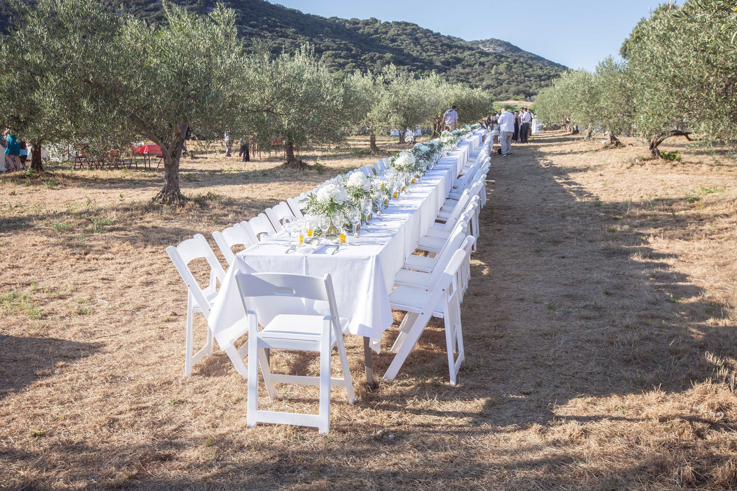 wedding planner in the french riviera